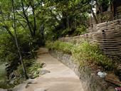 東京大学遊歩道